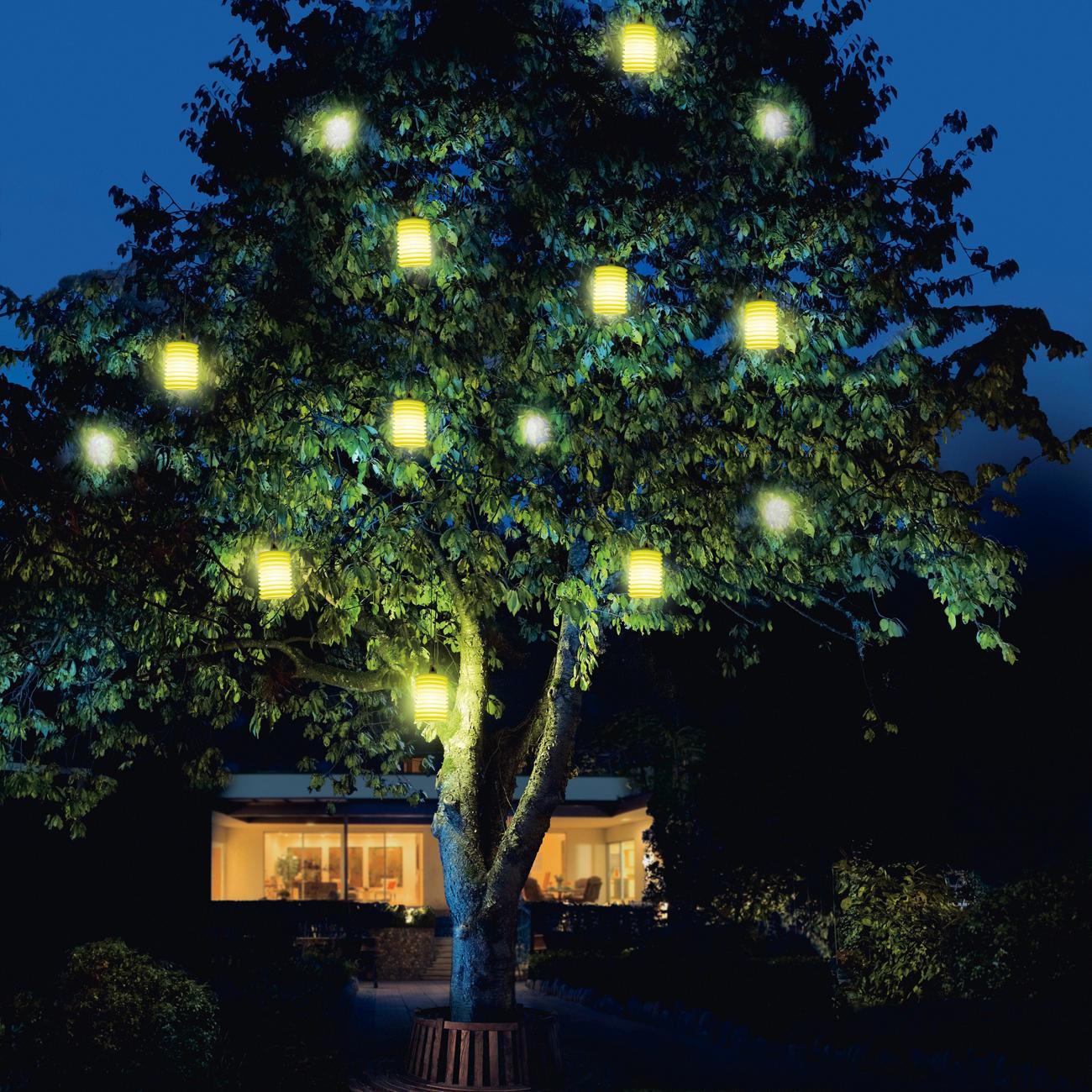 rotaliana lampion 3 jahre garantie pro idee. Black Bedroom Furniture Sets. Home Design Ideas